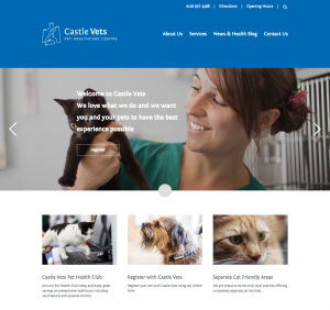 Castle Vets Homepage (short)