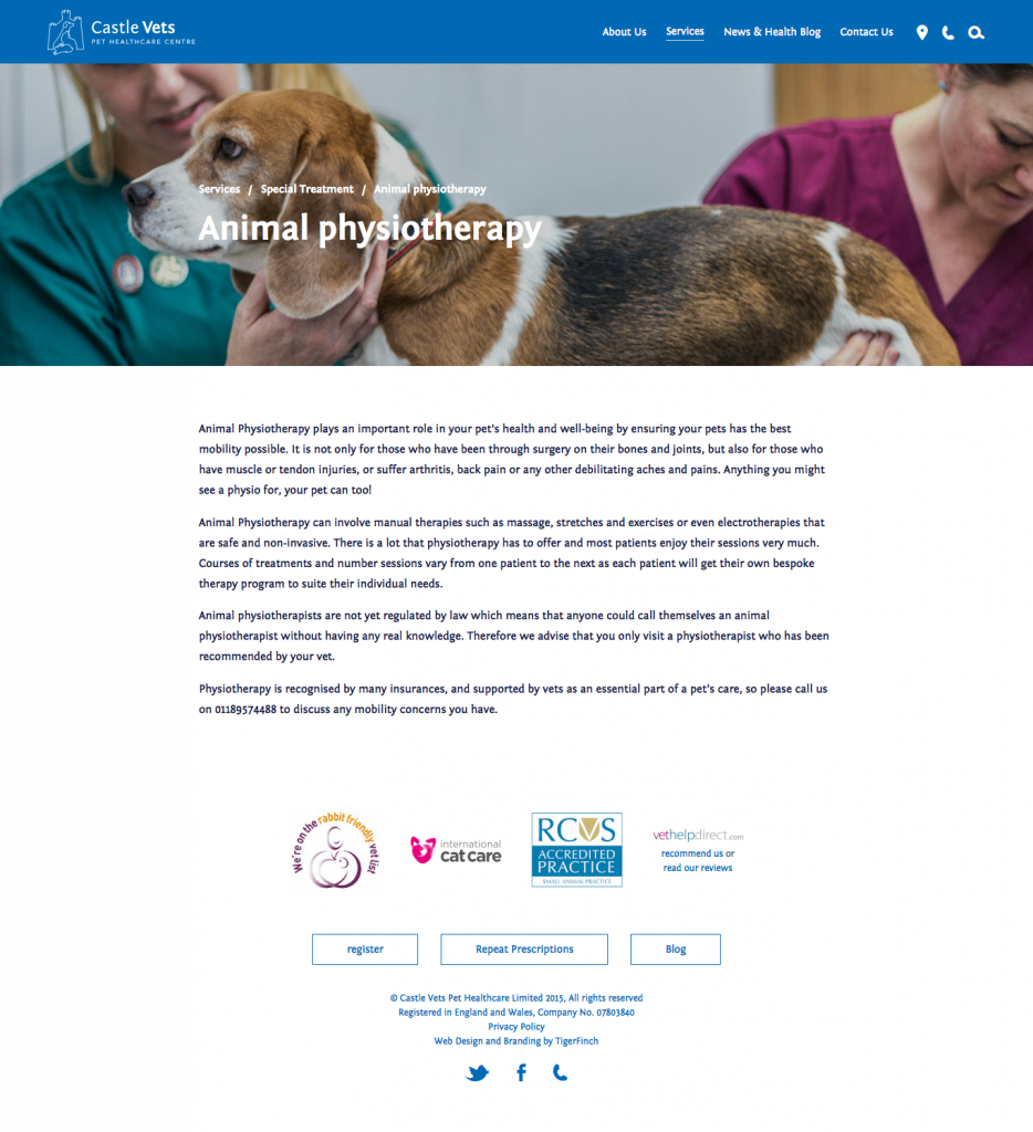 Castle Vets services-special-treatment-animal-physiotherapy
